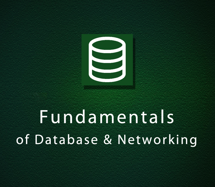 Fundamentals of Database & Networking